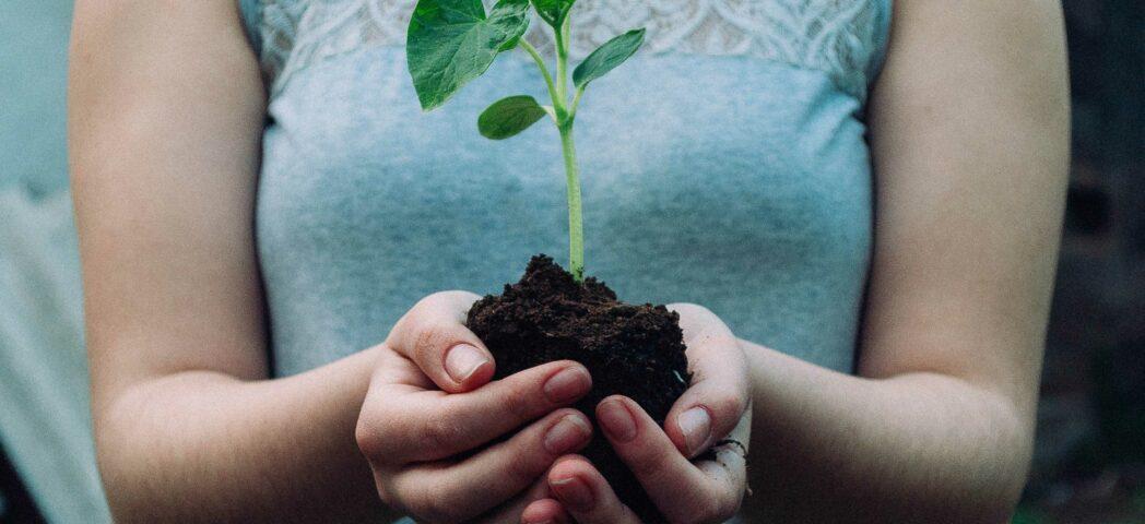De Gelderse Groeiversneller voucherbijdrage